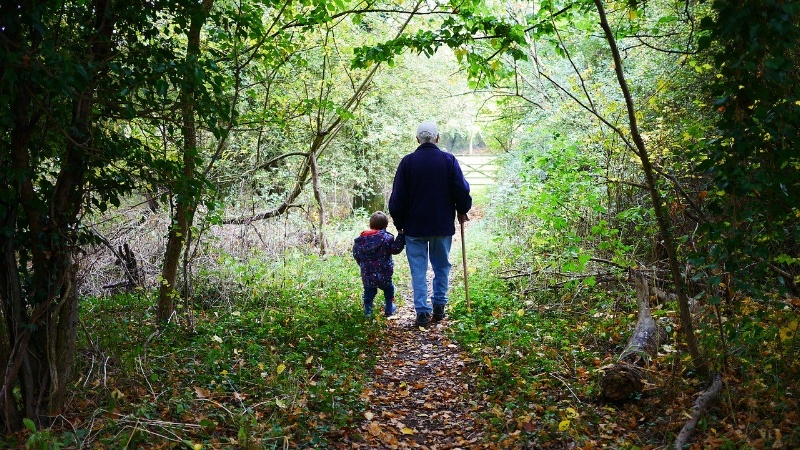 older man walking with young child