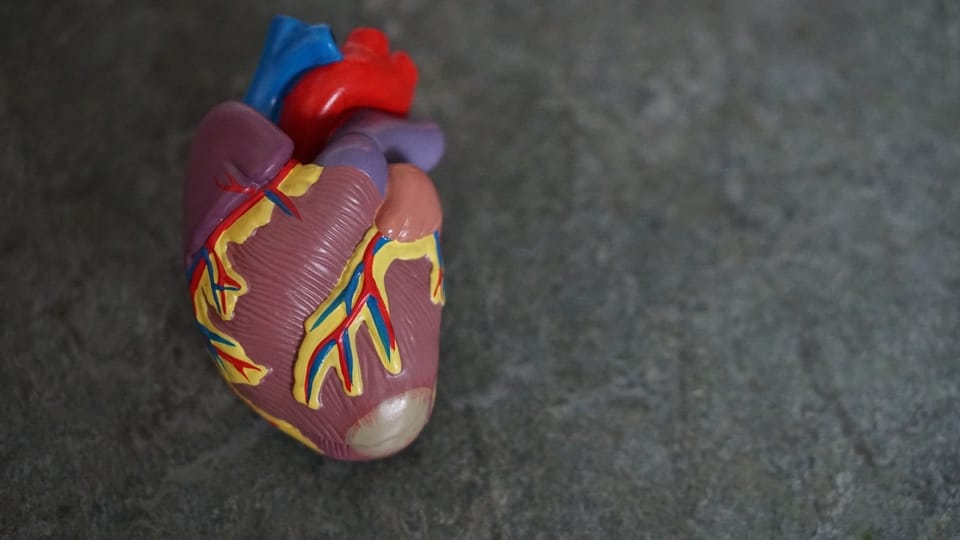 5 Tips for Lowering Your Risk of Heart Disease