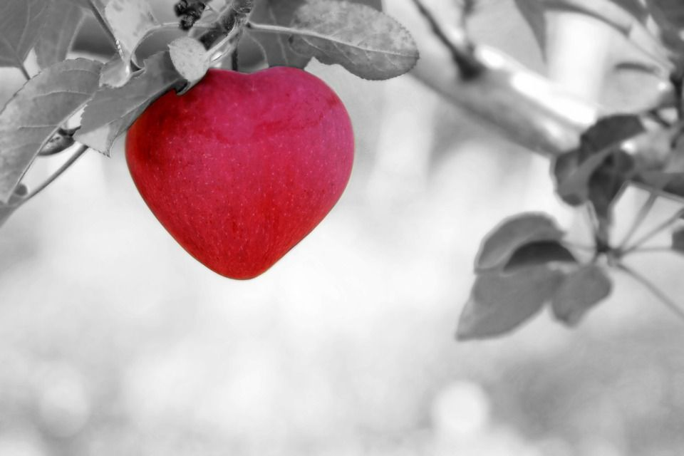 Give Your Heart Some Love During American Heart Month